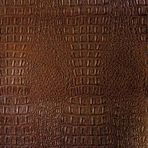 крокодил коричневый.jpg