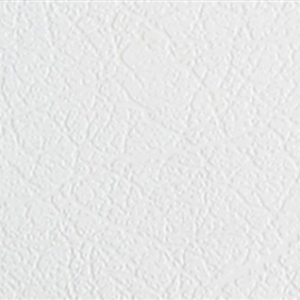 белый.jpg