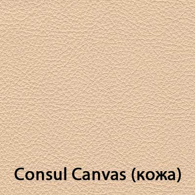 Consul-Canvas.jpg