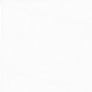 порошковая краска белая 9016.jpg
